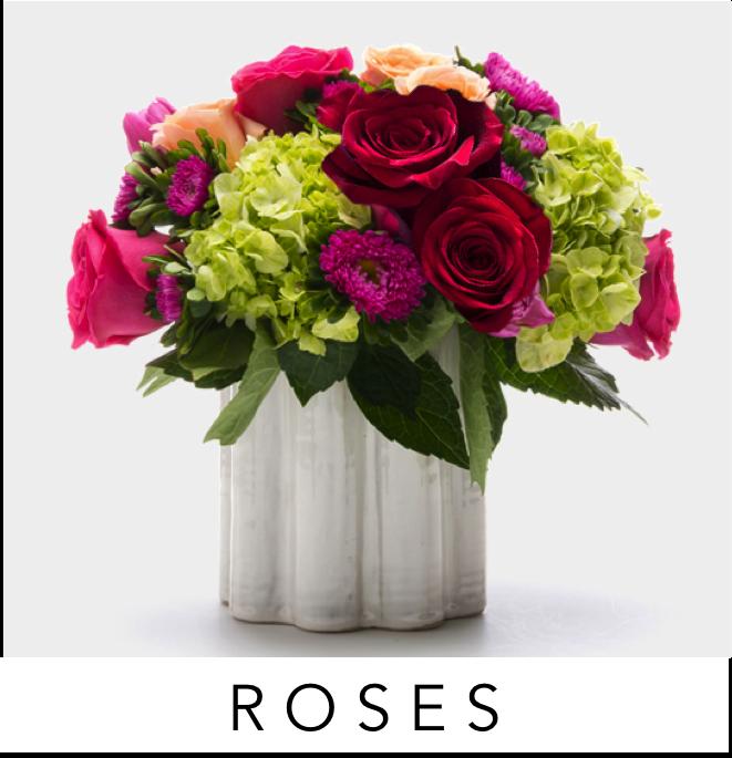 001-angies-roses-best-seller-rosas-ladder-plants-telefloral-ftd-proflowers-dish-gardens-delivery-3-floral-designs-el-paso-florist-texas-el-paso-flower-shop-worldwide-shopping-ftd-teleflora-flower-delivery-79912-best-florist-luxury-flowers-el-paso-.png