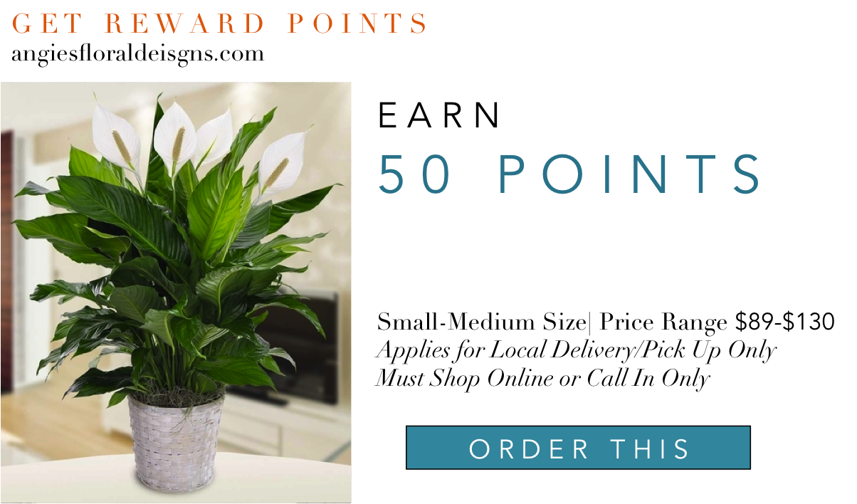 4-reward-points-5-angie-s-floral-designs-el-paso-florist-floreria-el-paso-angie-s-floral-designs-shop-flowers-online-el-paso-delivery-.png