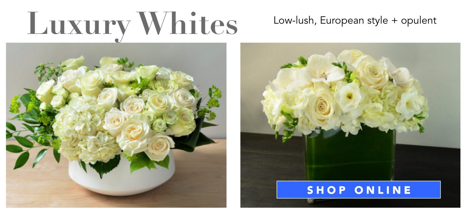 luxury-whites-flowers-angies-floral-designs-el-paso-florist-texas-79912-angies-flowers-el-paso-texas-angies-plants-dish-gardens-potted-vases-.png