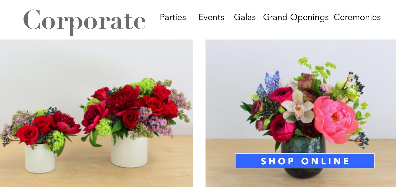 plants-succulents-flowerplants-angies-floral-designs-el-paso-florist-texas-79912-angies-flowers-el-paso-texas-angies-plants-dish-gardens-potted-vases-.png